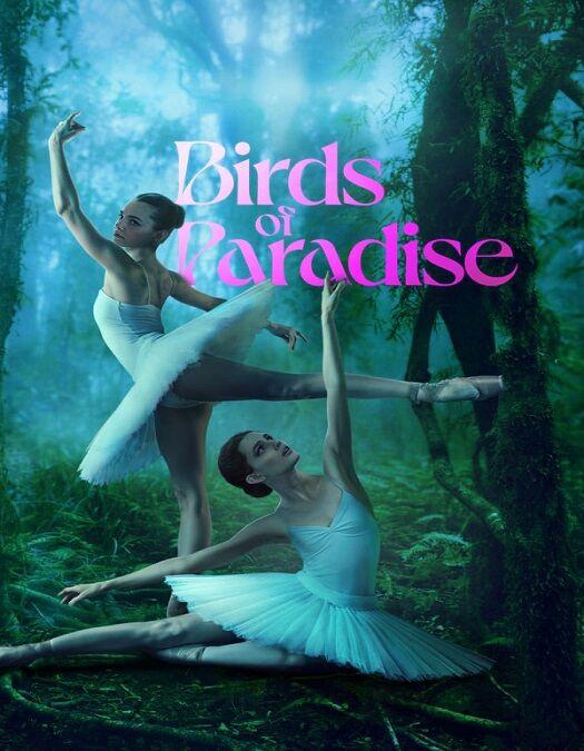 Pássaros de Liberdade Dublado